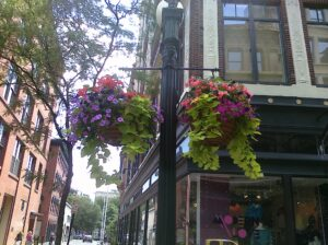 flower baskets in downtown Providence
